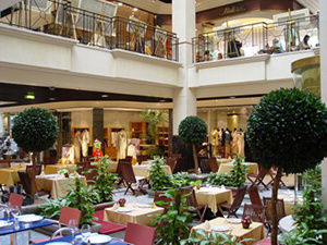 El jard n de serrano un centro comercial elitista for Jardin de serrano