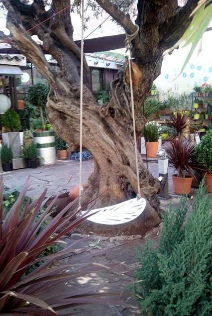 El jard n del ngel en madrid el vivero secreto sobre un for Cementerio parque jardin del sol pilar