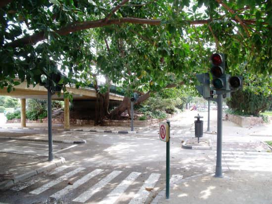 Parque infantil de tr fico de valencia aprende seguridad for Viveros valencia
