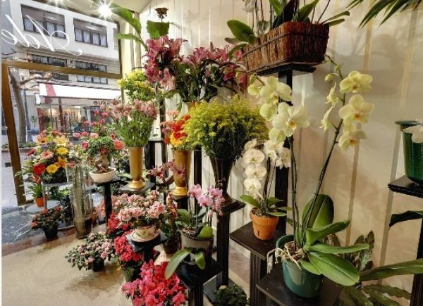 Adela en bilbao flores ex ticas en tu evento for Decoradores de interiores en bilbao
